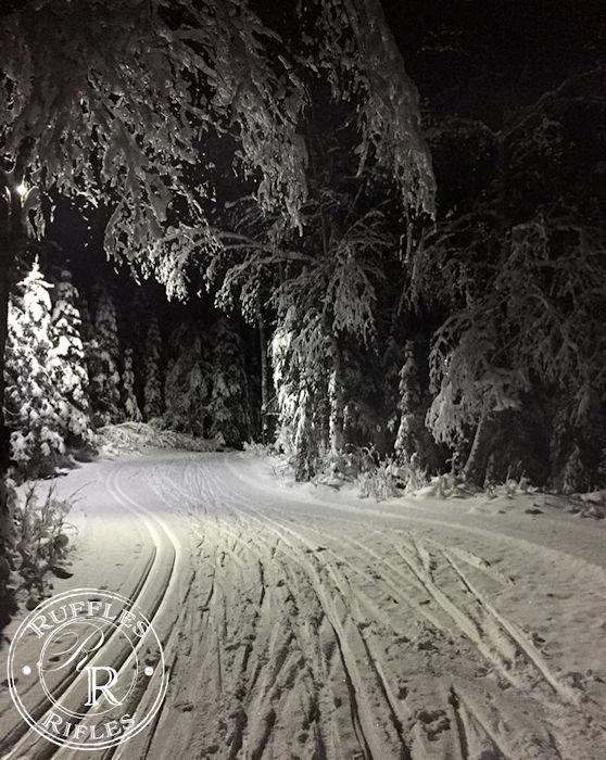 Alaskan View Ski Tracks